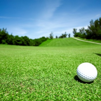 golf1-1024x682
